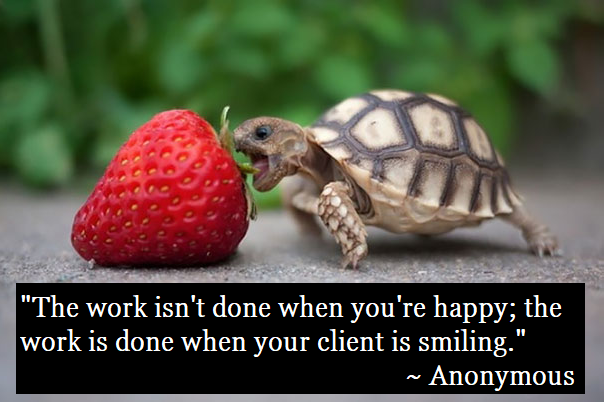 tortoise-strawberry-happy-customers-quote-reduce-cost-per-lead